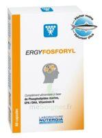 Ergyfosforyl Caps B/60 à MURET