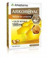 Arkoroyal Gelée Royale 1000 Mg Caps B/30 à MURET