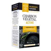 Dayang Charbon Végétal Activé 45 Gélules à MURET