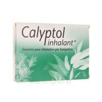 CALYPTOL INHALANT, émulsion pour inhalation par fumigation à MURET