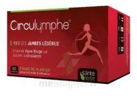 Santé Verte Circulymphe Triple Actions B/60 à MURET