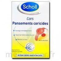 Scholl Pansements coricides cors à MURET
