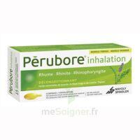 PERUBORE Caps inhalation par vapeur inhalation Plq/15 à MURET