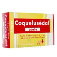 COQUELUSEDAL ADULTES, suppositoire à MURET