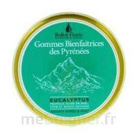 Ballot Flurin Gommes Bienfaitrices des Pyrénées à MURET