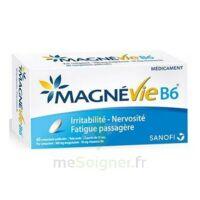Magnevie B6 100 Mg/10 Mg Comprimés Pelliculés Plaq/60 à MURET