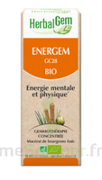 Herbalgem Energem Solution buvable bio Fl cpte-gttes/30ml à MURET