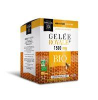 Dayang Gelée Royale 1500 Mg Bio 20 Ampoules à MURET