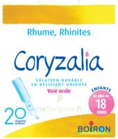 Boiron Coryzalia Solution buvable unidose B/20 à MURET